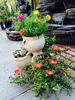 ceramika ogrodowa